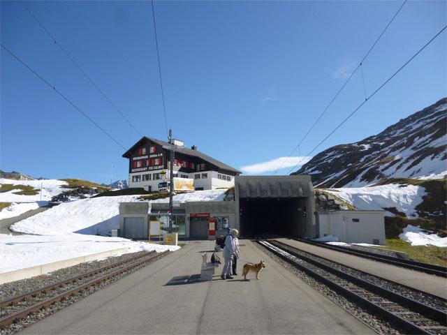 駅のホームで電車を待っている飼い主とワンちゃん